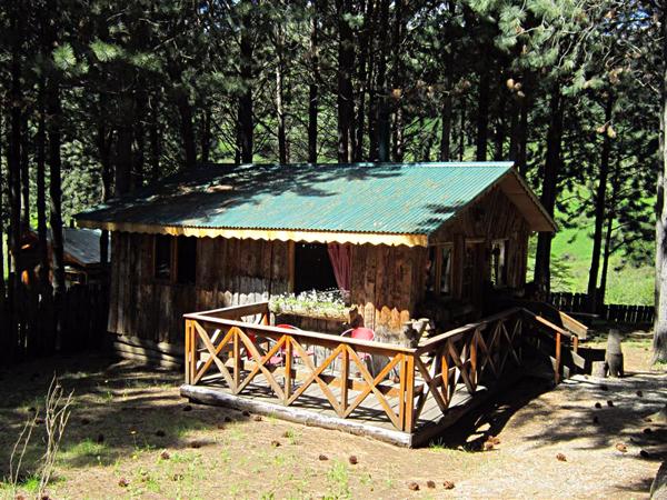 Caba as los pinos de coyhaique patagonia chile - Cabanas de madera los pinos ...